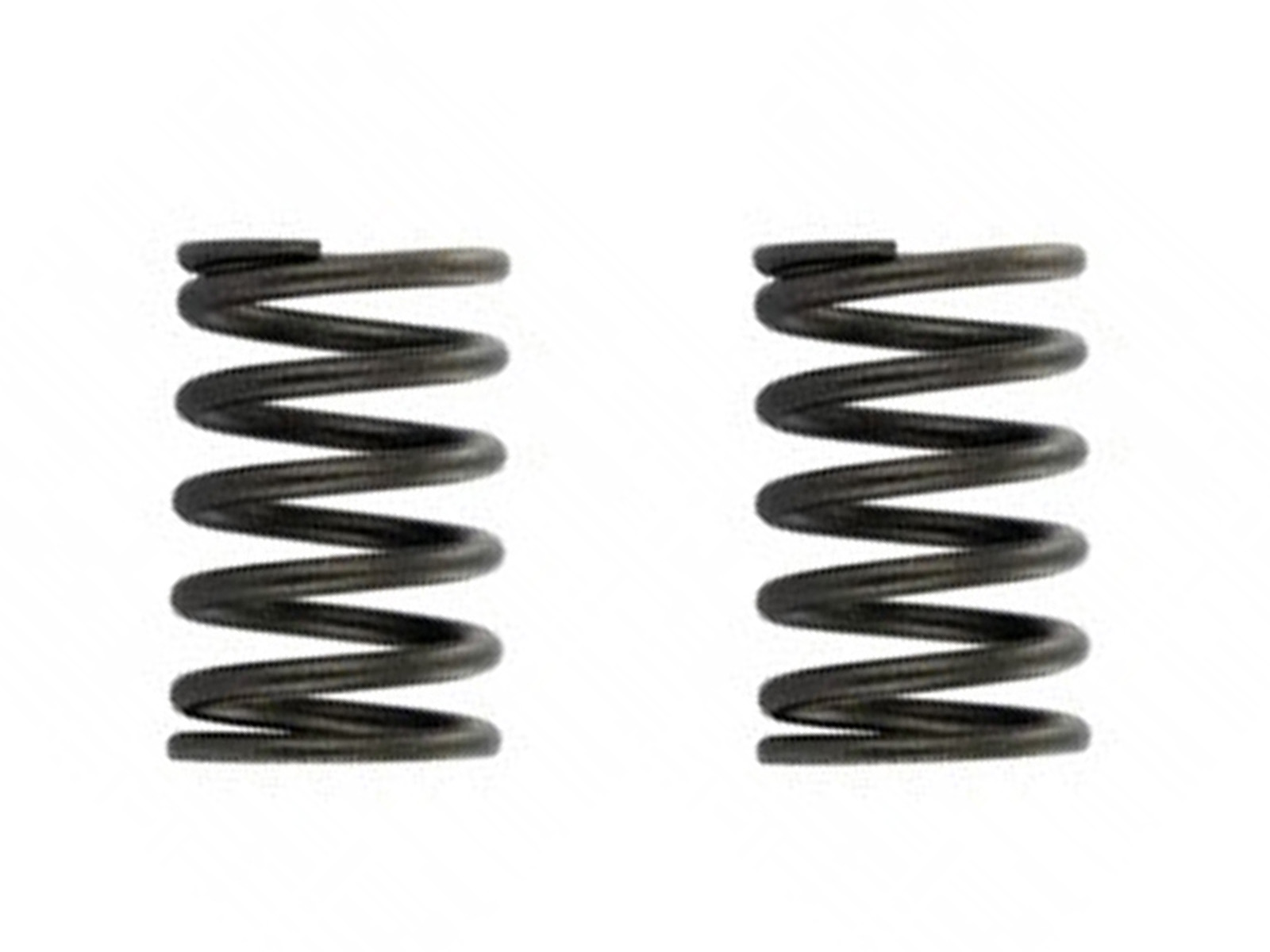 Proven Part Valve Springs Set of 2 for GX340-GX390